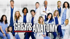 source: greysanatomy.wikia.com