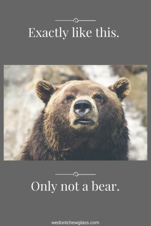 only-not-a-bear